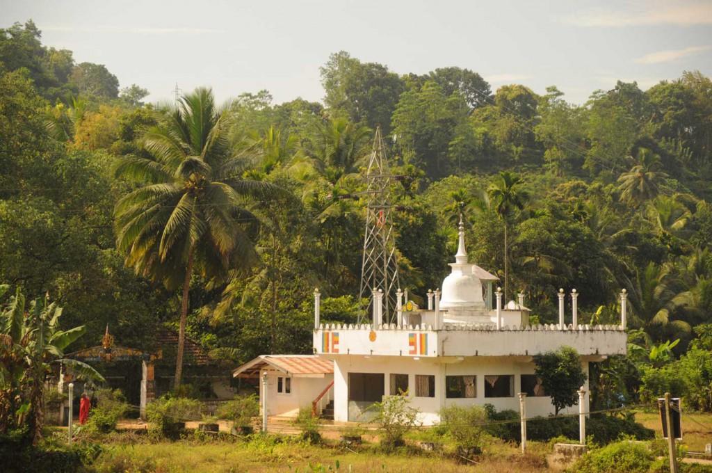 Deniyaya Sri Lanka Sinharaja Regenwald