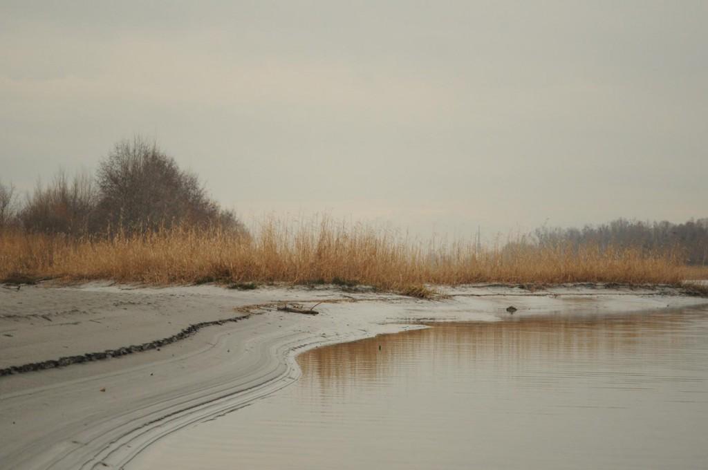Bodensee-Rheinmündung