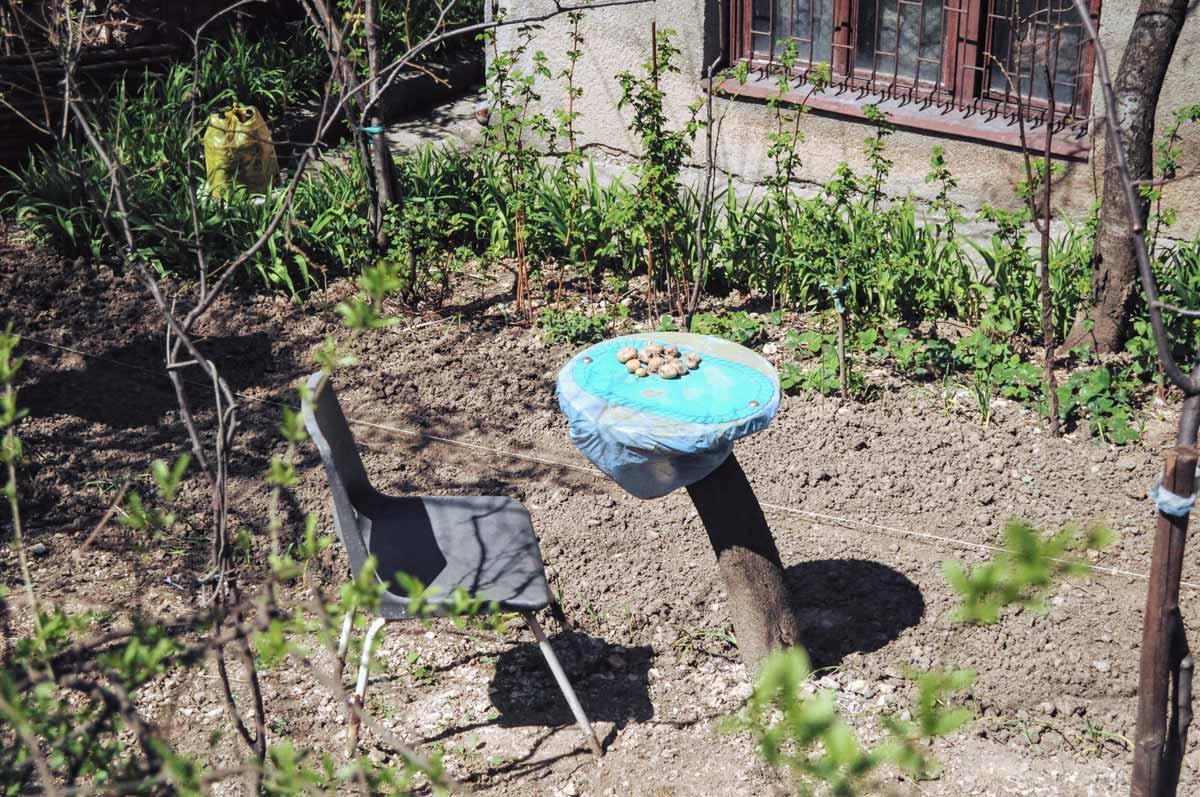 Garten in Sarajevo