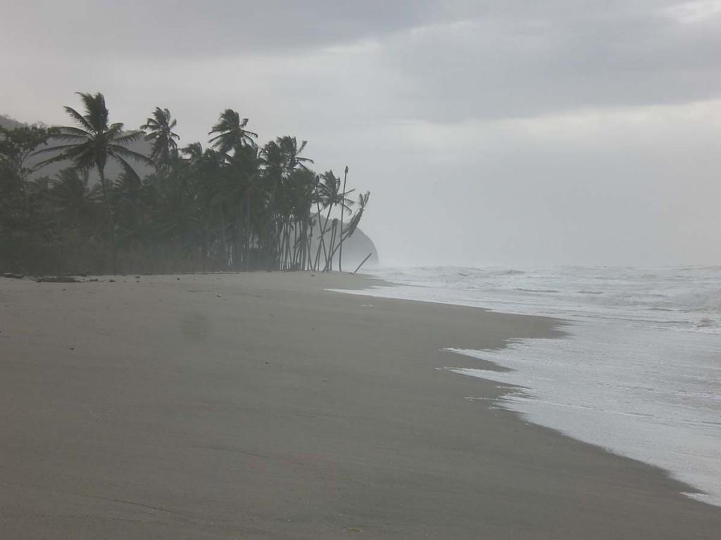 Sturm in Palomino