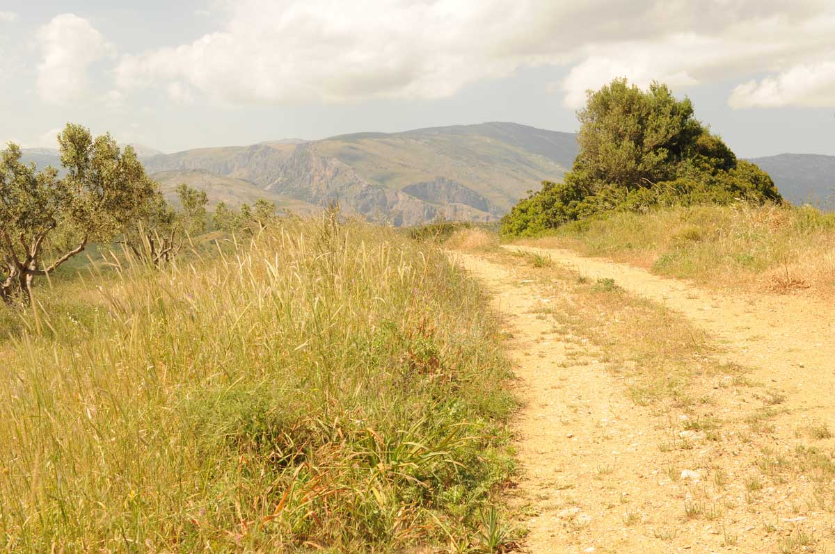 Euböa: Spaziergang bei Agios Georgios