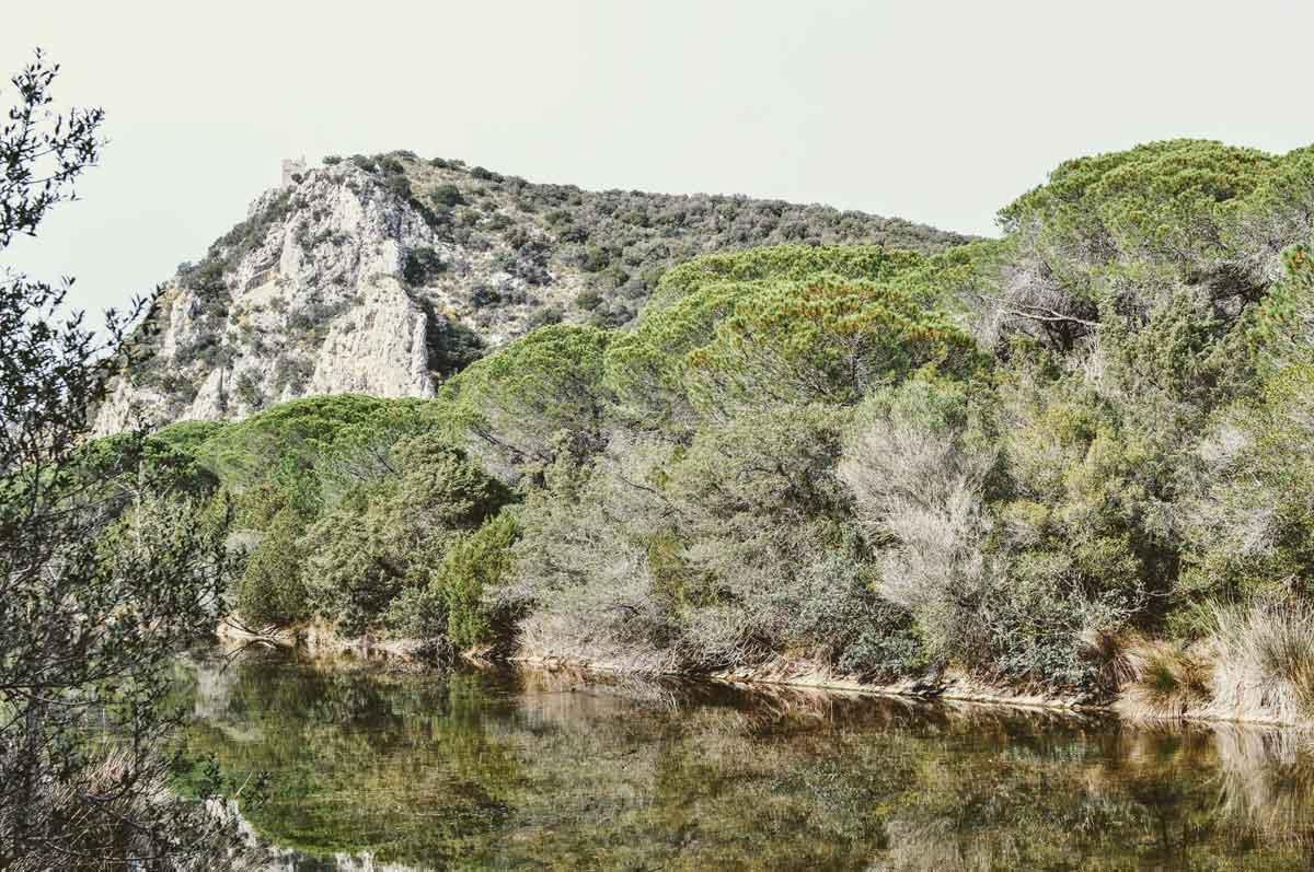 Entwässerungskanal in der Maremma