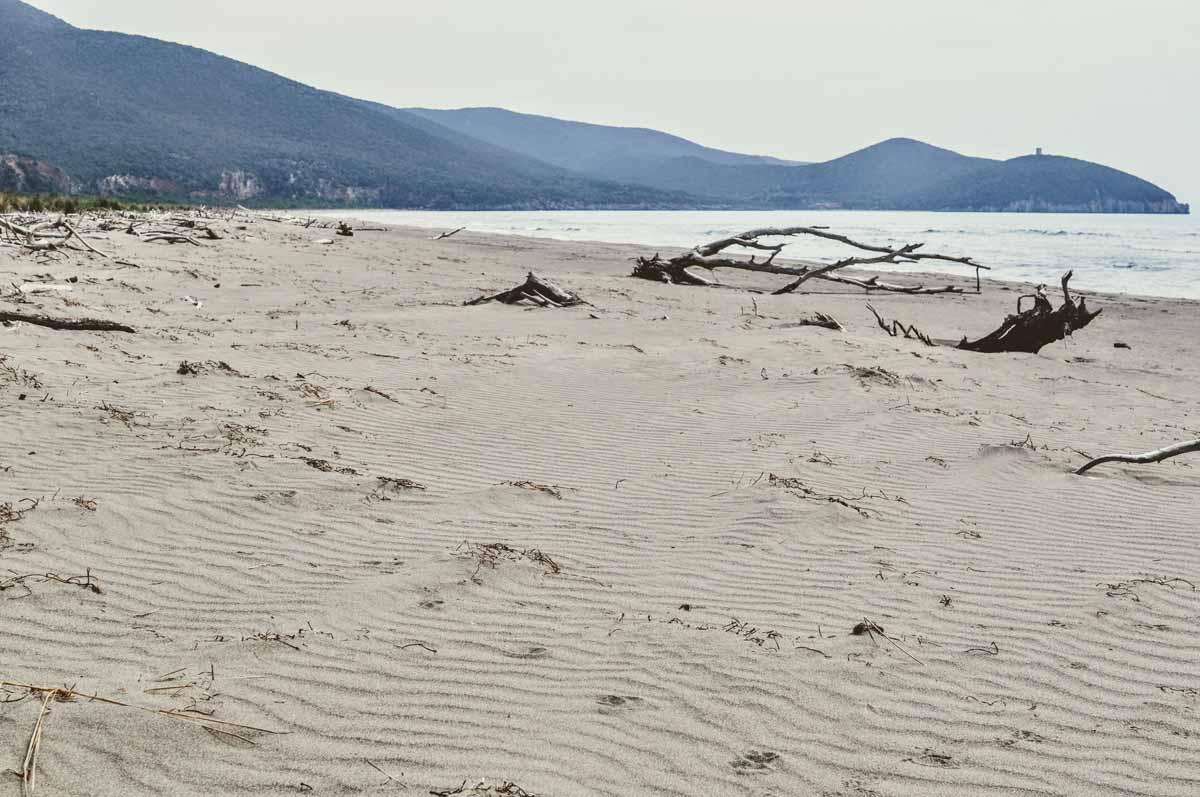Wilder Strand in der Maremma
