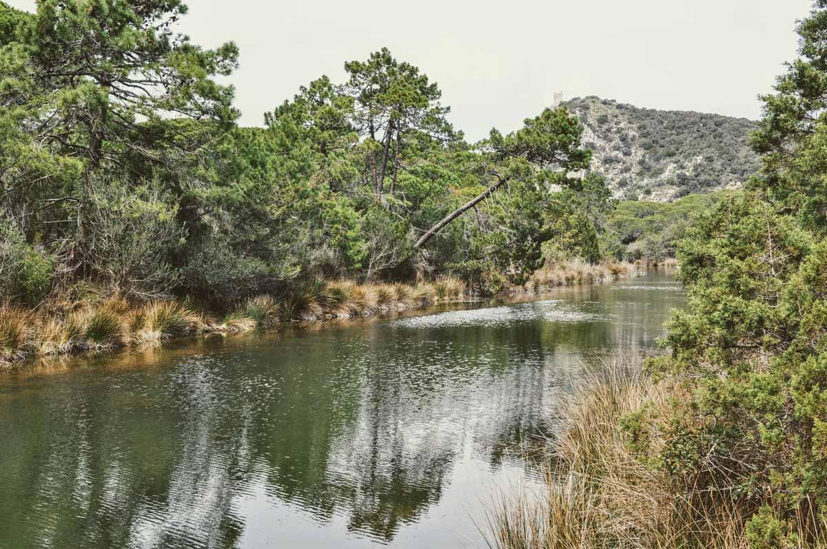 Flusslandschaft in der Maremma
