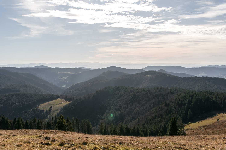 Blick über den Schwarzwald vom Herzogenhorn aus