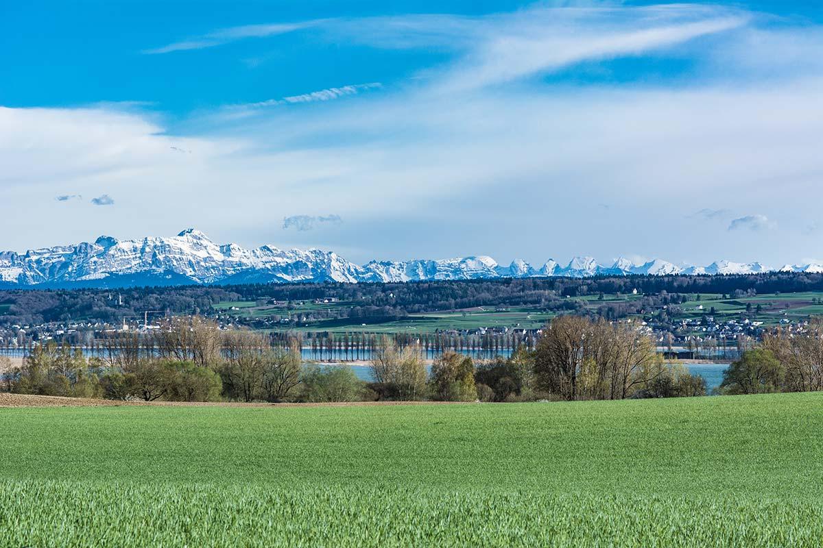 Die Alpen hinter dem Bodensee