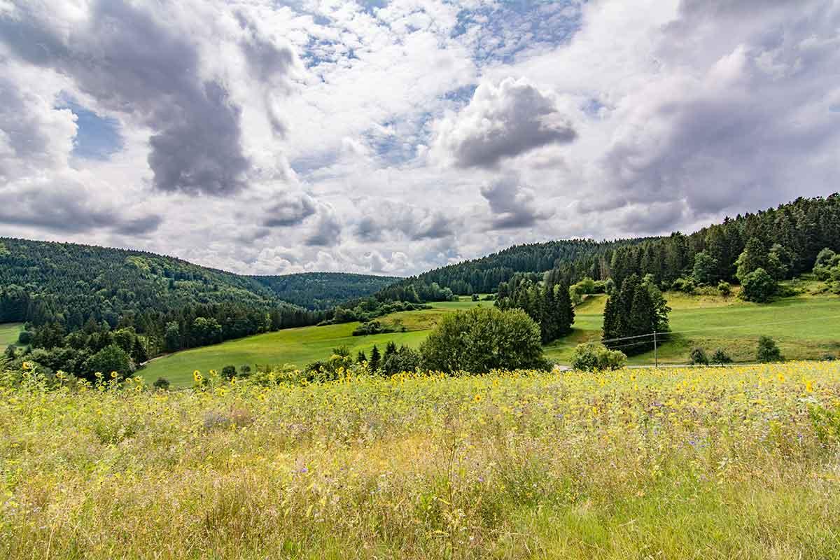 Dornhan-Bettenhausen