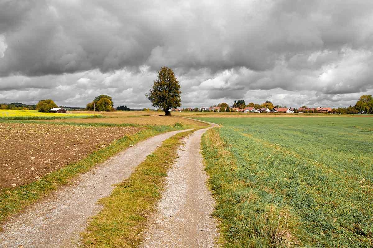 Panorama von Dornhan